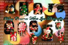 Merry Christmas & Happy New Year from IGOR Photography